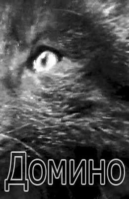 Детский фильм домино 1973 год игорь негреску